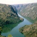 Arribas do Douro
